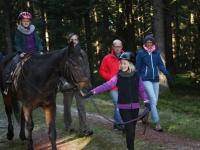 Pferd Bruno reiten
