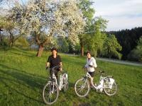 E - Bike