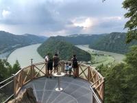 Blick auf die Donauschlinge