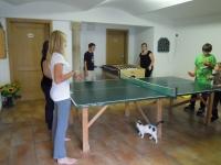 Tischtennisraum mit Dart und Kicker